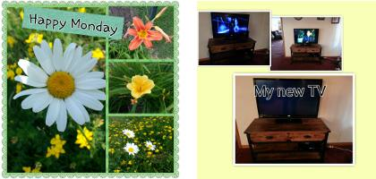 image - Photo Grid Example