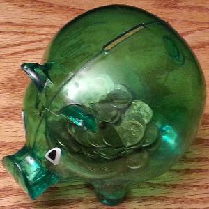 image - Piggy Bank