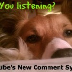 YouTube Comment System