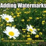 Adding Watermarks