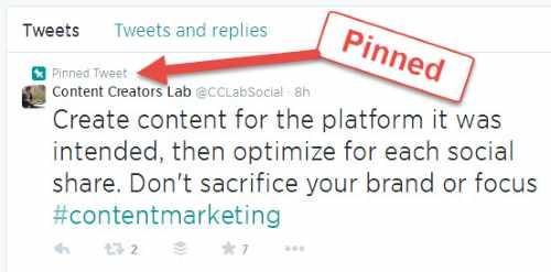 Pinned Tweet screenshot