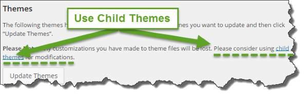 Using Child Themes