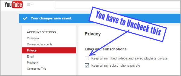 screenshot YouTube Privacy